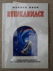 náhled knihy - Reinkarnace