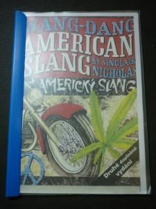 náhled knihy - wang-dang:american slang