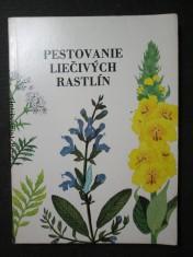 náhled knihy - Pestovanie liečivých rastlín