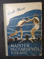 náhled knihy - Majster pästiarskych rukavíc