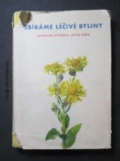 náhled knihy - Sbíráme léčivé byliny