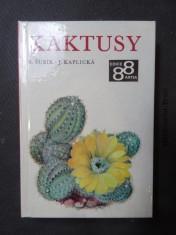 náhled knihy - Kaktusy : Nejkrásnější kaktusy a sukulenty