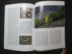 náhled knihy - Příroda a krajina v okolí Svaté Heleny