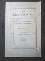 náhled knihy - Die Schrothsche Kur