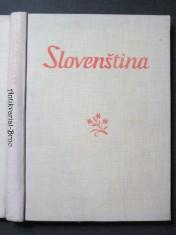 náhled knihy - Slovenština : Vysokoškolská učebnice pro studující českého jazyka