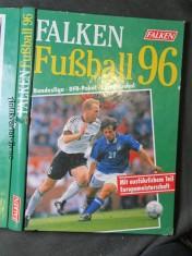 náhled knihy - Falken Fußball 96. Meisterschaft, DFB - Pokal