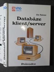 náhled knihy - Databáze klient