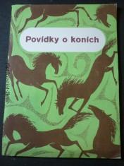 náhled knihy - Povídky o koních