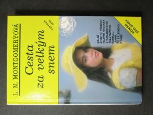 náhled knihy - Cesta za velkým snem : Román pro dívky