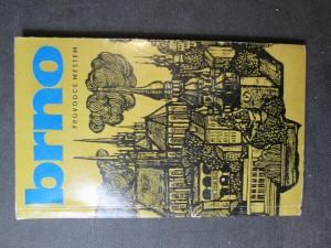 náhled knihy - Brno : průvodce městem