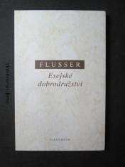 náhled knihy - Esejské dobrodružství : židovské společenství od Mrtvého moře : čeho si lze povšimnout u Ježíše, Pavla, Didaché a Martina Bubera