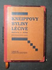 náhled knihy - Kneippovy byliny léčivé