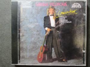 náhled knihy - Lenka Filipová - Concertino