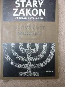 náhled knihy - Starý zákon 14-dvanáct proroků