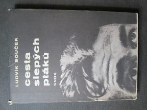 náhled knihy - Cesta slepých ptáků