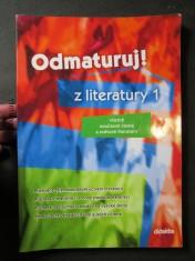 náhled knihy - Odmaturuj! z literatury 1 [včetně současné české a světové literatury