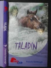 náhled knihy - Taladin