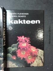 náhled knihy - Kakteen