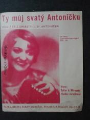 náhled knihy - Ty můj svatý Antoníčku