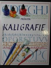 náhled knihy - Kaligrafie