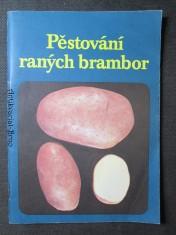 náhled knihy - Pěstování raných brambor