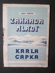 náhled knihy - Zahrada mládí Karla Čapka