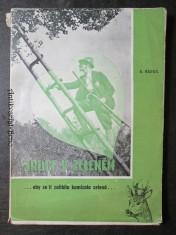 náhled knihy - Srdce v zeleném ... aby se ti zalíbila kamizola zelená...