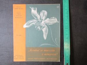 náhled knihy - Koukal se muezzin z minaretu. Orient. Píseň z operety Bílá orchidej