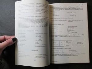 náhled knihy - Do You speak English? : Anglicky snadno, stručně, spolehlivě