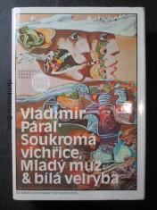 náhled knihy - Soukromá vichřice, Mladý muž, Bílá velryba