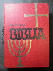 náhled knihy - Ilustrovaná biblia : Výber statí s farebnými obrázkami