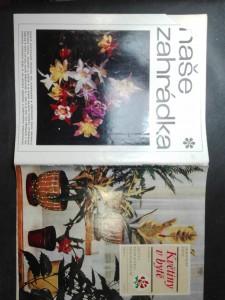 náhled knihy - Sešity domácího hospodaření (svazek 41) - Květiny v bytě