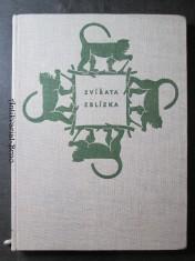 náhled knihy - Zvířata zblízka : Procházka pražskou zoologickou zahradou