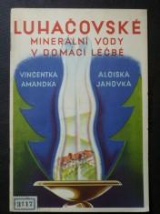 náhled knihy - Luhačovské minerální vody v domácí léčbě