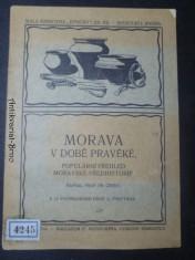 náhled knihy - Morava v době pravěké. Populární přehled moravské předhistorie