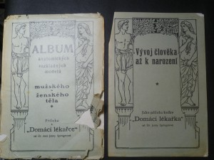 náhled knihy - Album anatomických rozkladných modelů mužského a ženského těla. Vývoj člověka až k narození