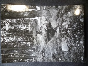 náhled knihy - Kvilda - pramen Vltavy