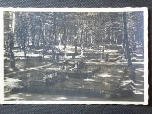 náhled knihy - Zlín - Baťova hrobka na lesním hřbitově