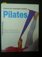 náhled knihy - Pilates - Cvičení pro dokonalou postavu