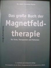 náhled knihy - Das große Buch der Magnetfeldtherapie für Ärzte Therapeuten und Patienten