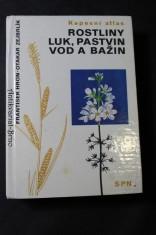 náhled knihy - Kapesní atlas, Rostliny luk, pastvin, vod a bažin