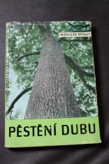náhled knihy - Pěstění dubu