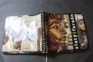 náhled knihy - Zlatý faraón