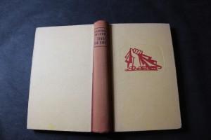 náhled knihy - Život, ne smrt ... : Román