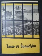 náhled knihy - Teror ve Španělsku