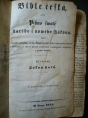 náhled knihy - Bible česká, čili písmo swaté starého i nowého Zákona