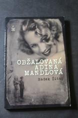 náhled knihy - Obžalovaná Adina Mandlová