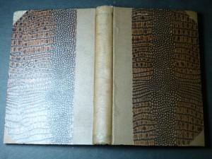 náhled knihy - pentagram sborník pro filozofii, mystiku a okkultism