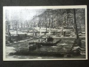 náhled knihy - Zlín. Baťova hrobka na lesním hřbitově