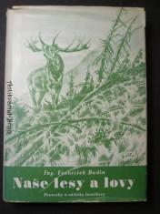 náhled knihy - Naše lesy a lovy - poznatky a zážitky lesníkovy